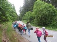 Wildpark Mehlmeisel 08.06._11