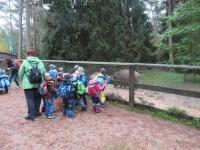 Ausflug Wildpark Hufeisen 12.10._11