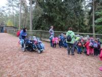 Ausflug Wildpark Hufeisen 12.10._13
