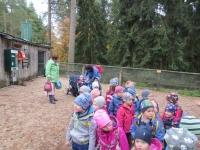 Ausflug Wildpark Hufeisen 12.10._8